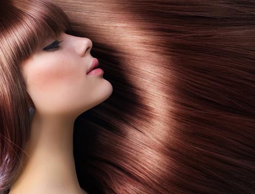 seasonal hair care environments