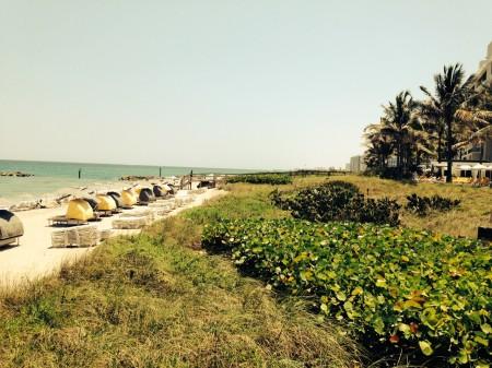 travel-beauty-beach-club-resort
